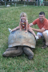 Tessa on a turtle