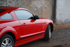 06' Ford Mustang Black Striped on Red