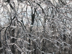 Ice storm leaves thousands without power