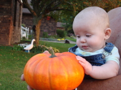 Parker and the Punkin