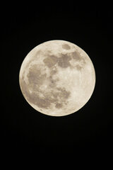 Super Moon 