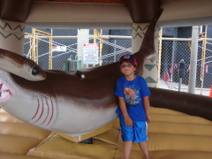 Ft Myers Shark Fest