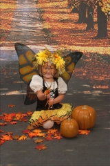 Butterflies Like To Trick or Treat Too