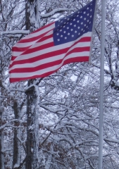 Old Glory in the snow..