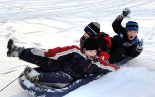 Family fun sledding