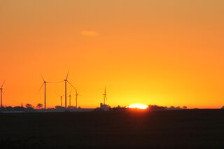 Sunrise in the wind farm