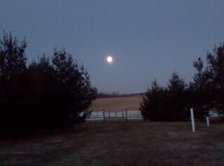 moon sets over the pasture!