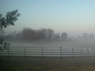 peaceful foggy start to the day!