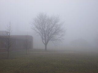 Foggy School Day