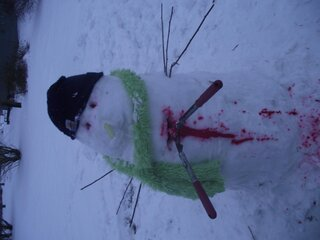 all snowman cant be alive!!