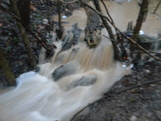 Flooding April 17 2013