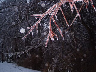 Ice Storm in Pekin