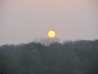 Sunrise over the trees in Chillicothe