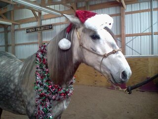 Christmas bling in the barn