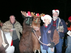 Christmas caroling with the llamas