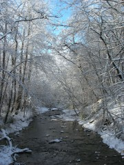Lick Creek in Winter