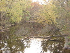 Sugar Creek in the fall