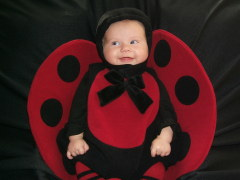 Our little Ladybug
