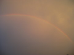 Beautiful full rainbow yesterday Normal