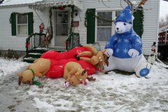 Santa's reindeer had a little to much Egg Nog!