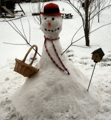 Why not a Snow Women?