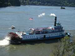 Steamboat crashes into shoreline