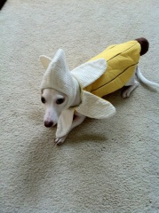 Kirbanana