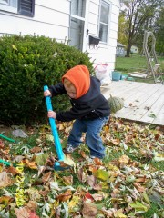 Raking Time