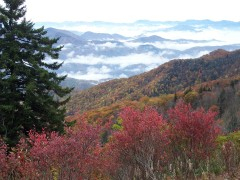 Smokey Mountain October