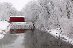 Frozen Fog at Henderson Covered Bridge