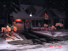 Snow and Christmas Lights