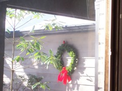 Cardinal decorates wreath for us