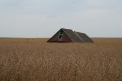 Fanishing Barns in the Midwest