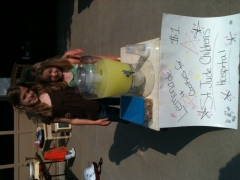 Lemonade to benefit St. Jude