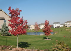 Fall comes to Dunlap