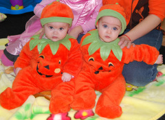 Too Cute Punkins