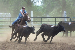 Cowgirl chasing cows instead of boys!