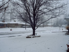 feb.snow in Pekin