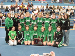 IHSA Sectional - Small Varsity Cheerleading Champs!