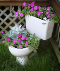 Pot full of flowers