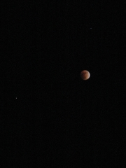 Eclipse 20Feb2998
