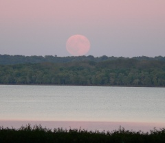 Moonrise on the Illinois River