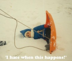 Sledding Mishap