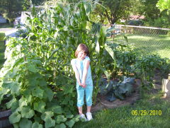 Breanne Smallberger's Garden