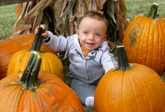 Zach and pumpkins!