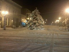 Delavan Main street Christmas tree