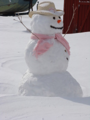 Ms Snow woman