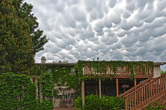 Backyard Mammatus