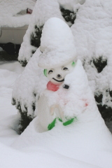 Snowman with a new hat and cape.