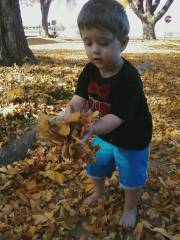 Fun Times While Playing In Some Leaves!!